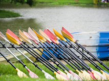 Oars in a row. Oars for kayak in a row Royalty Free Stock Photos