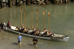 Oars up in harbour at Clovelly, Devon. CLOVELLY, UNITED KINGDOM - AUGUST 16 a rowing boat rises its oars preparing to start during the Copilot Gigs Regatta Stock Photography