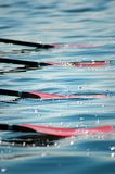 Oars in the Water. Oars from rowing competition lie in water Royalty Free Stock Photos