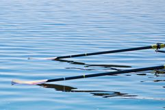 Oars on the Water Stock Photos