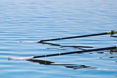 Oars on the Water. Focus on back oar blade Stock Photos