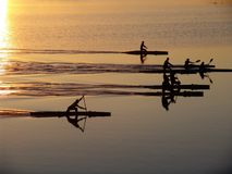 Oarsmans on canoe. In a lake in the summer evening Royalty Free Stock Photography