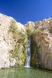 oas Arkivfoto