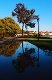 oas Fotografering för Bildbyråer