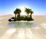 oas Royaltyfri Bild