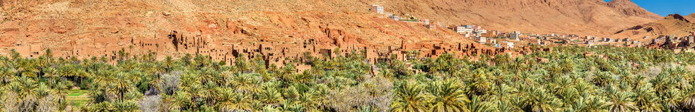 Oas av den Todra floden på Tinghir, Marocko arkivbild