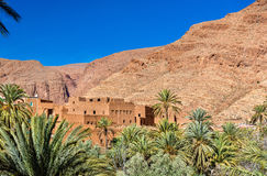 Oas av den Todra floden på Tinghir, Marocko arkivfoton