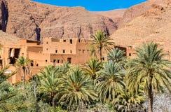 Oas av den Todra floden på Tinghir, Marocko royaltyfri foto