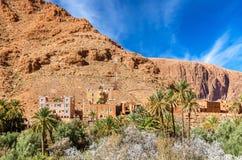 Oas av den Todra floden på Tinghir, Marocko Fotografering för Bildbyråer