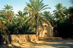 Oas Tozeur, Tunisien Arkivfoton