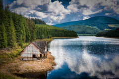 oasa de lac image stock