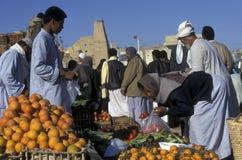 OASE AFRIKAS ÄGYPTEN SAHARA SIWA lizenzfreie stockfotos