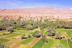 Oase in de dadevallei in Marokko Afrika Stock Foto