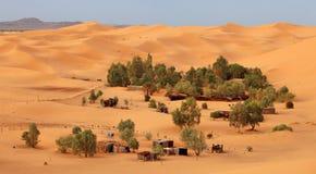 Oase in de Sahara Stock Fotografie