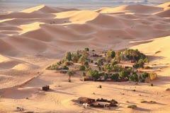 Oase in de woestijn van de Sahara Royalty-vrije Stock Fotografie