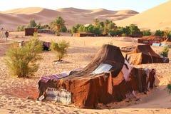 Oase in de woestijn van de Sahara Stock Foto