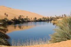 Oase, de Woestijn van de Sahara Royalty-vrije Stock Afbeeldingen