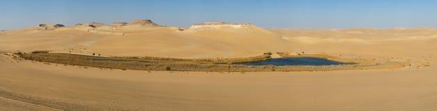 Oase in de woestijn van de Sahara in Egypte Stock Fotografie