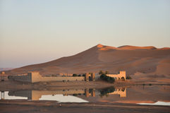 Oase in de woestijn van de Sahara, Marokko Stock Foto's