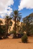 Oase in de woestijn van de Sahara stock afbeelding