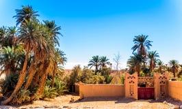 Oase in de woestijn van de Sahara van Marokko royalty-vrije stock fotografie