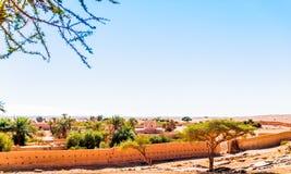 Oase in de woestijn van de Sahara van Marokko stock foto
