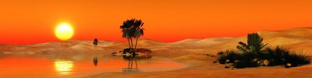 Oase in de zandige woestijn Stock Foto