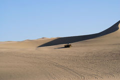 Oase in der Wüste Stockbild