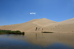 Oase in der Wüste Lizenzfreie Stockfotos