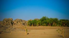 Oase dichtbij Derde Cataract van Nijl dichtbij Tombos, de Soedan royalty-vrije stock foto