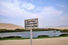 Oase door de zandige duinen wordt omringd dat royalty-vrije stock fotografie
