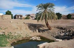Oase met palm en water in Egyptische woestijn stock fotografie