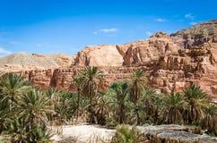 Oase met palmen in de woestijn onder de hoge rotsachtige bergen in van Zuid- Egypte Dahab Sinai stock afbeeldingen
