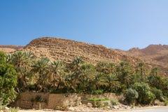 Oase met Palmen in het midden van de rotsachtige woestijn royalty-vrije stock afbeelding