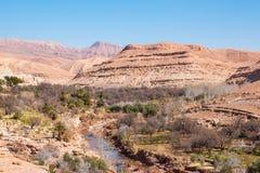 Oase onder de heuvels in Marokko royalty-vrije stock afbeeldingen