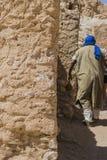 Oase op woestijn in Tunesië royalty-vrije stock afbeeldingen