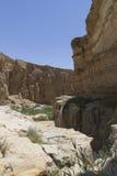 Oase in Tunesië royalty-vrije stock afbeeldingen