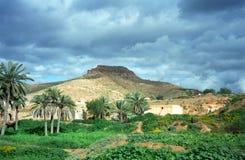 Oase, Tunesië stock afbeeldingen