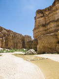 Oase in Tunesië royalty-vrije stock fotografie