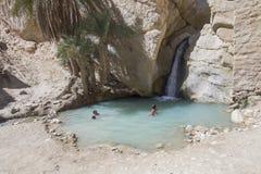 Oase in Tunesien Lizenzfreie Stockbilder