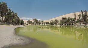 Oase van Huacachina in de woestijn van Ica royalty-vrije stock afbeeldingen