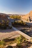 Oase van Palmen, Oued Tissint, Marokko royalty-vrije stock afbeeldingen