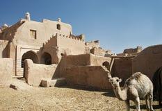 Oasedorf und -kamel nahe yazd der Iran Stockbild