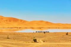 Oasemeer in de woestijn van de Sahara, Merzouga, Afrika Royalty-vrije Stock Afbeelding