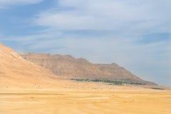 Oasi con le montagne ed il deserto in Israele Fotografie Stock Libere da Diritti