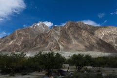 Oasi degli alberi verdi sul modo K2 al campo base, Baltoro fotografia stock libera da diritti