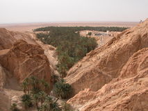 Oasi del Sahara Fotografie Stock