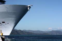 Oasi della nave da crociera dei mari Immagini Stock