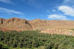 Oasi della palma in montagne asciutte del deserto in Africa del nord Immagini Stock Libere da Diritti