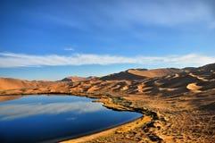 Oasi in deserto Fotografie Stock